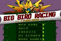 Big Birds Racing