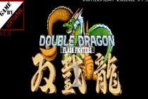 Double Dragon: Flash Fighters