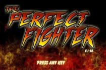 The Perfect Fighter