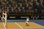 BunnyLimpics VolleyBall